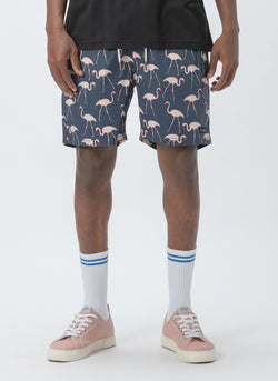 "Amphibious 17"" Swim Short Flamingo"
