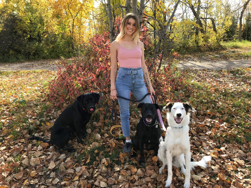 How Hayley Discovered Raw is the Answer to a Happy, Healthy Life for her Dogs