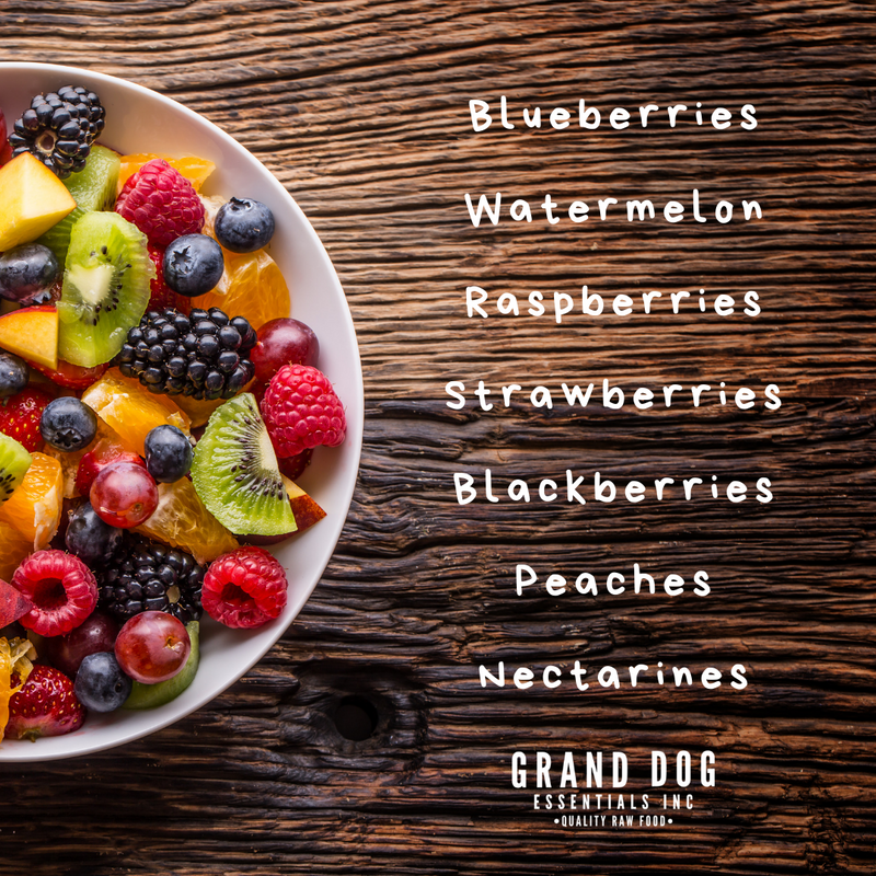 Three Reasons to Feed Summer Fruit to Your Dog