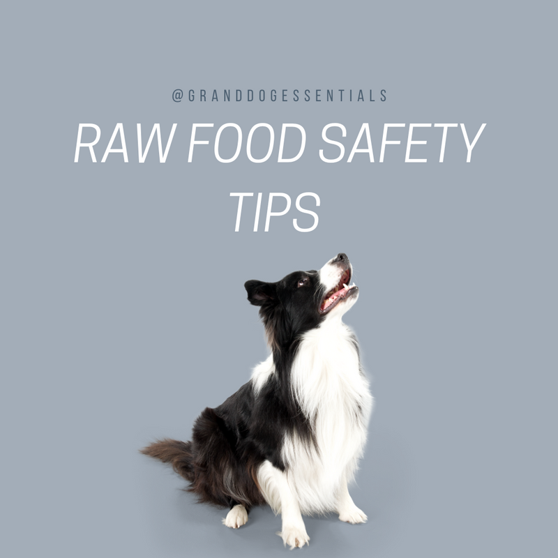 Raw Dog Food Safety 101: 7 Tips to Keep You and Your Dog Safe