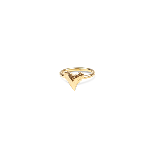 Ocean Republic | Mini shark tooth ring gold