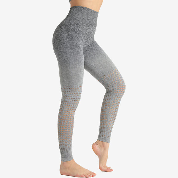 Two Tone Mesh Seamless Legging