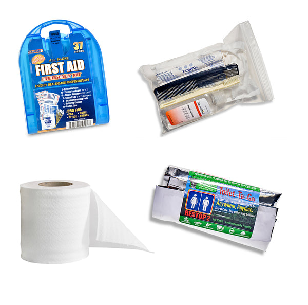 MakeSafe Winter Storm Kit