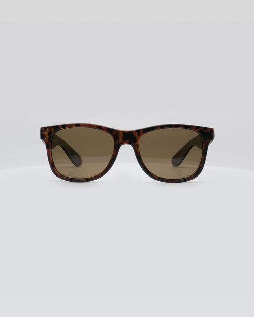Local Supply Everyday Sunnies - Tortoise Whisky