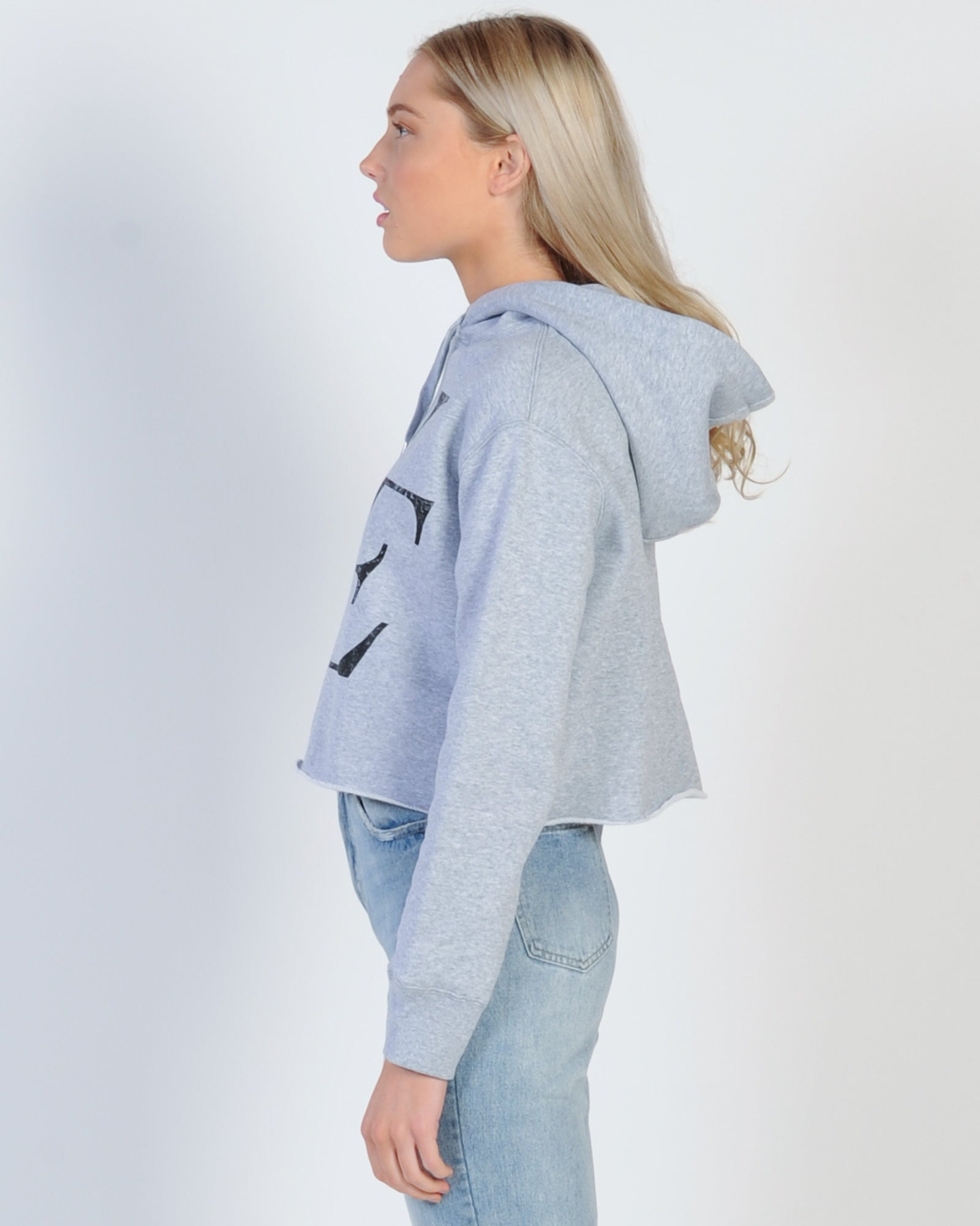 All About Eve Classic Eve Hood Sweat - Grey
