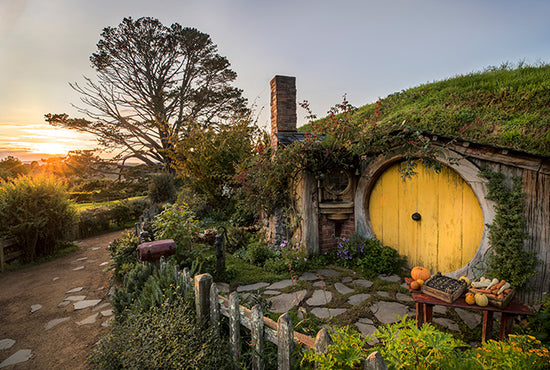 Hobbiton Set and Waitomo Caves (Auckland Return)