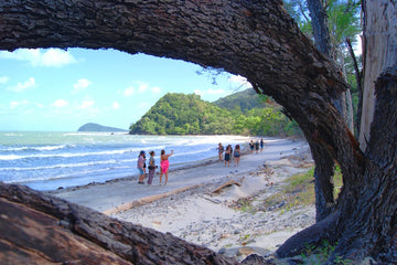 Cape Tribulation Day Adventure