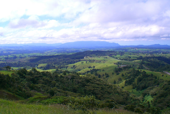 Atherton Tablelands Rainforest & Waterfalls Adventure