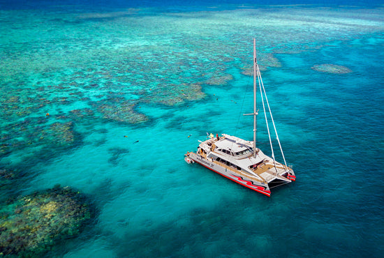 Cairns Snorkel & Dive Cruise (Passions)