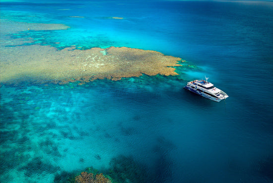 Port Douglas Snorkel & Dive Cruise (AquaQuest)