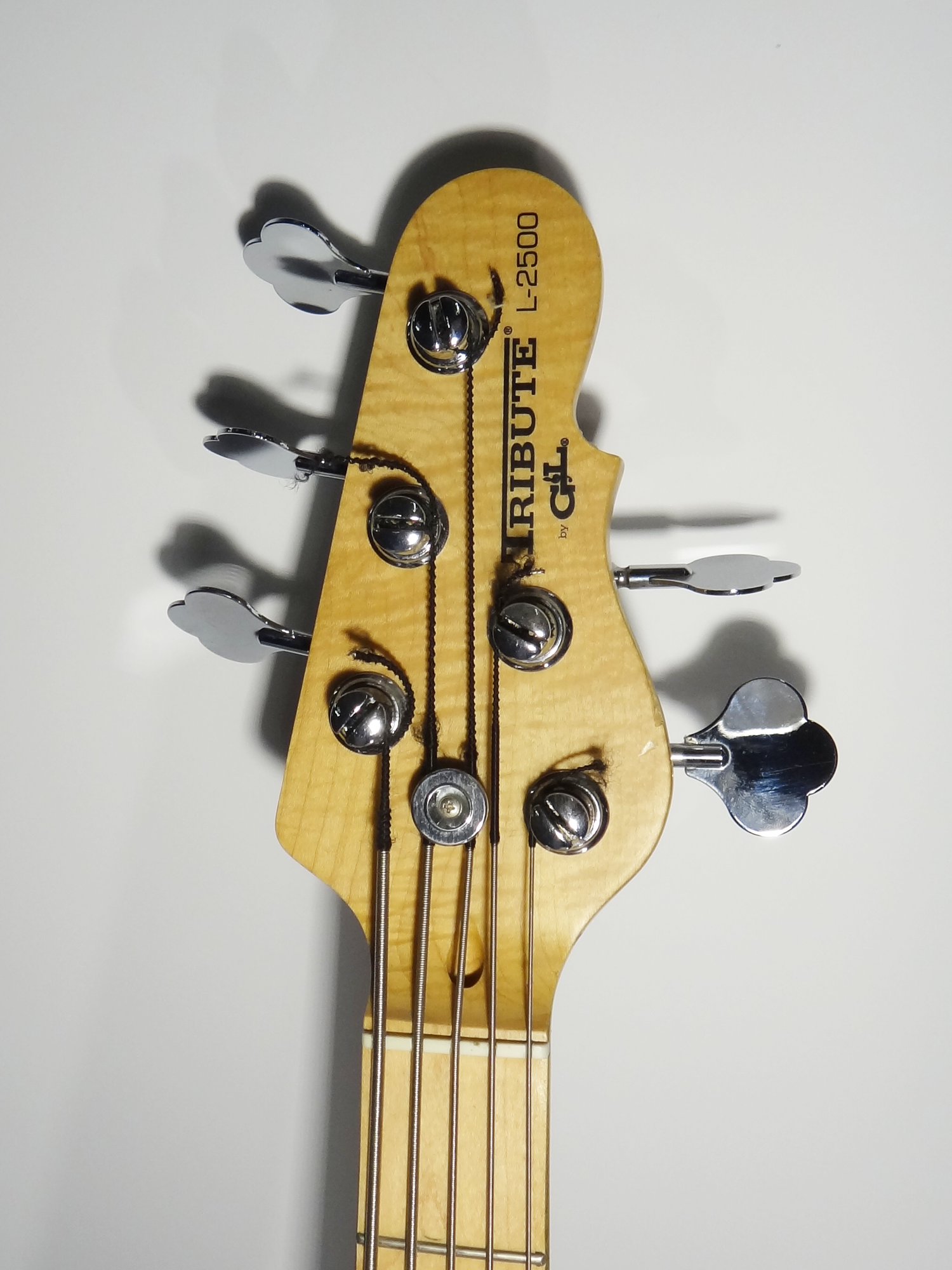 G&L Tribute L-2500 5 String Wooden Bass Guitar