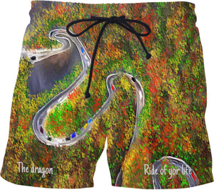 Swim shorts The Dragon Ride Of Your Life