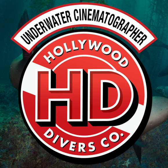 Take the NAUI Underwater Cinematographer Course at Hollywood Divers in Los Angeles