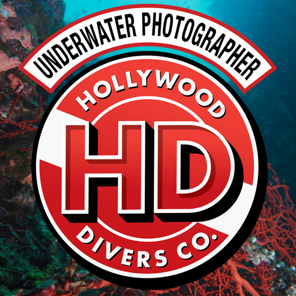 Learn Underwater Photography from the Scubapro's at Hollywood Divers