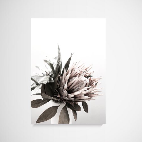 Print | The Styler Protea