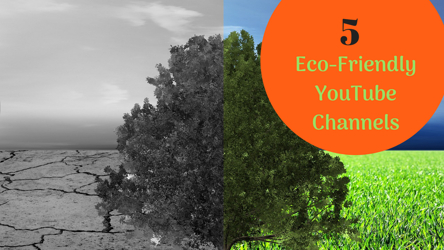 5 Eco-Friendly YouTube Channels That Inspire Change