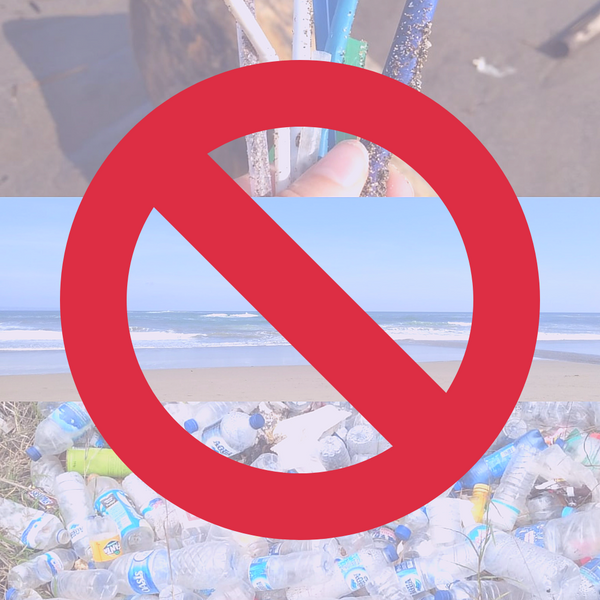 Bali Bans Single-Use Plastic - 60% Waste Reduction Targeted