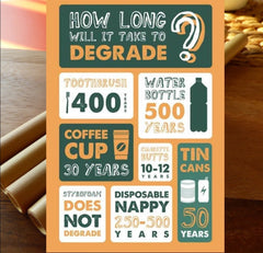eco friendly infographics