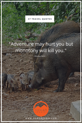 Monotony Will Kill You Quote