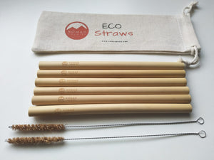 NG Bamboo Straws Pack of 6 With Cleaners & Bag - Nomad Genie