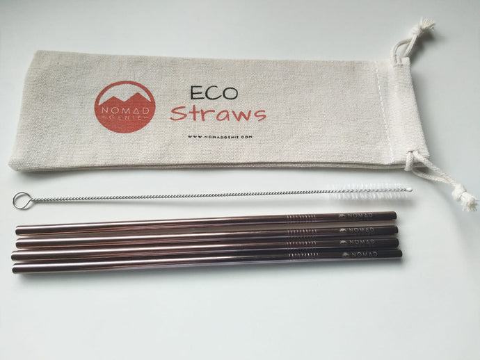 NG Metal Straws 4 pack Straight - 6mm - Nomad Genie