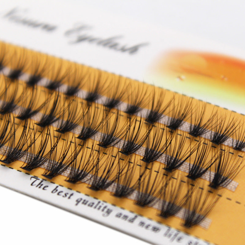 Natural Soft False Eyelash Extension