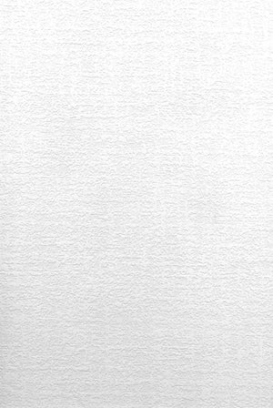 Lou Paintable Plaster Texture Wallpaper-white plaster textured design