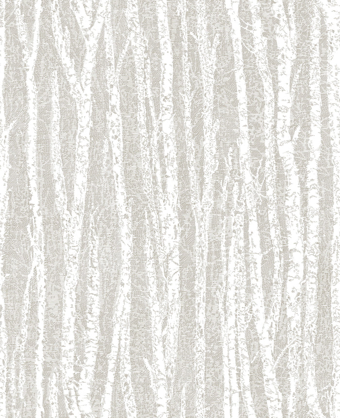 Flay Taupe Birch Tree Wallpaper