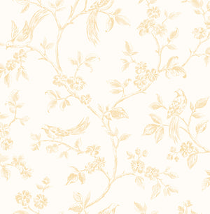 Ray Light Yellow Bird Trail Wallpaper-features delightful songbirds fluttering about blossoming trails. Its light yellow hand drawn design emphasizes its charming style,