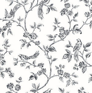 Ray Black Bird Trail Wallpaper-The curling trail pattern has birds perched among delicate flowers, while its hand drawn design adds to its fanciful style.