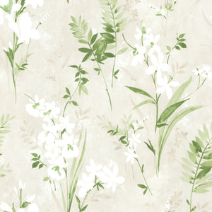 Turner Cream Watercolor Floral Wallpaper-Beautiful white flowers blossom against a cream background with its pearlescent sheen and watercolor style.