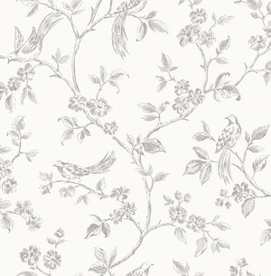 Advantage Aaron White Bird Trail Wallpaper-SKU#2814-24977-Its grey pattern, featuring birds and flowers, pops against an off-white background.  hand-drawn style.