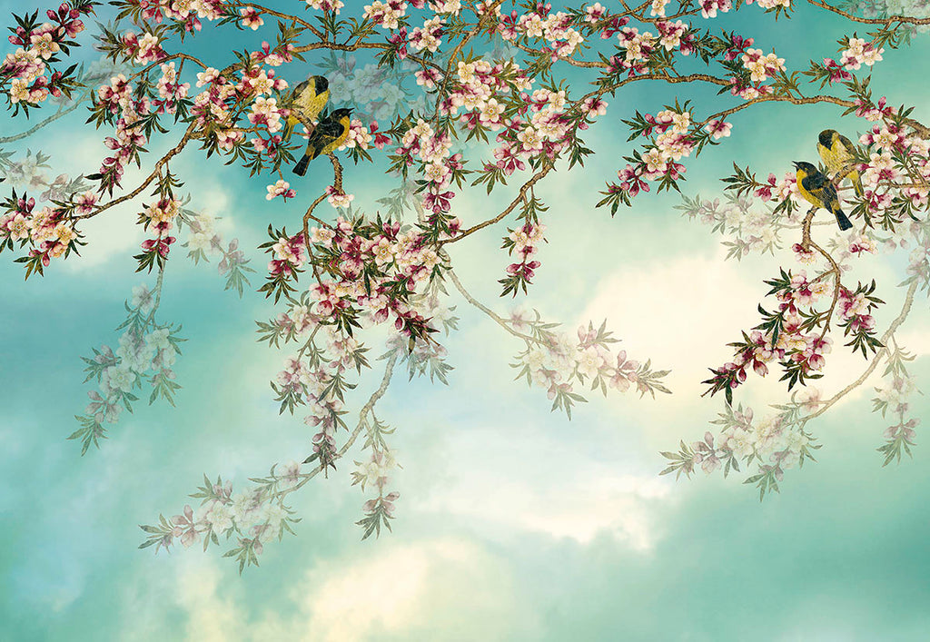 Sakura Wall Mural-Stunning cherry blossoms peek through hazy clouds and Yellow birds perch upon delicate branches, with a teal background.
