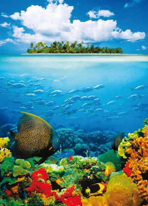 Treasure Island Wall Mural-Tropical fish amid a coral reef add a burst of vivid color to this island scene with cloudy blue sky.