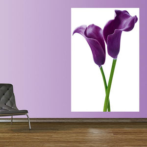 Purple Calla Lillies Wall Mural- two purple calla lilies on a white background. hung in hallway