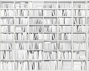 Library Wall Mural-The black and white design has a modern look with blank white titles.