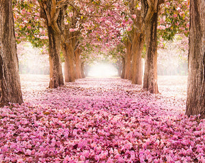 Yonder Wall Mural (SKU WALS0125) A trail of magnificent pink flowers is framed by graceful trees, creating an enchanting foliage scene.
