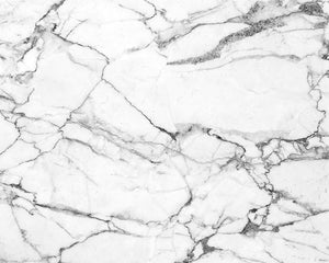 Marble Wall Mural-large scale white marble