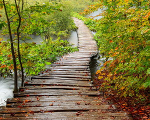 Path to Enlightenment Wall Mural-A wood path crosses over a rushing stream just as the leaves begin to change colors