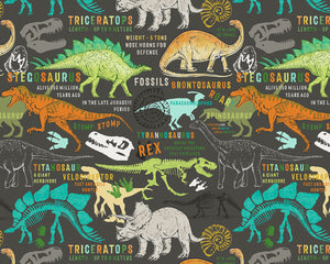 Dinosaurs Wall Mural-playful colors and enchanting dinosaur definitions
