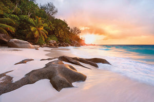 Nature Wall Mural-The photographic design showcases white sand, a bright blue tide, a lush forest, and a stunning sunset.