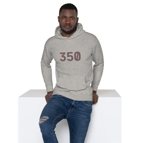 "350 ""Zyon"" Cotton Hoodie3Stripe Warehouse"