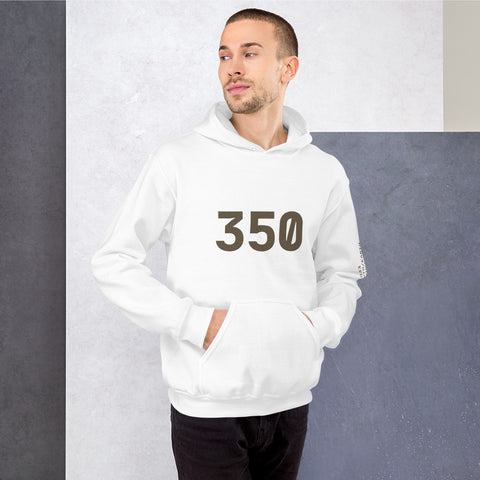 "350 ""Earth"" Cotton Hoodie3Stripe Warehouse"
