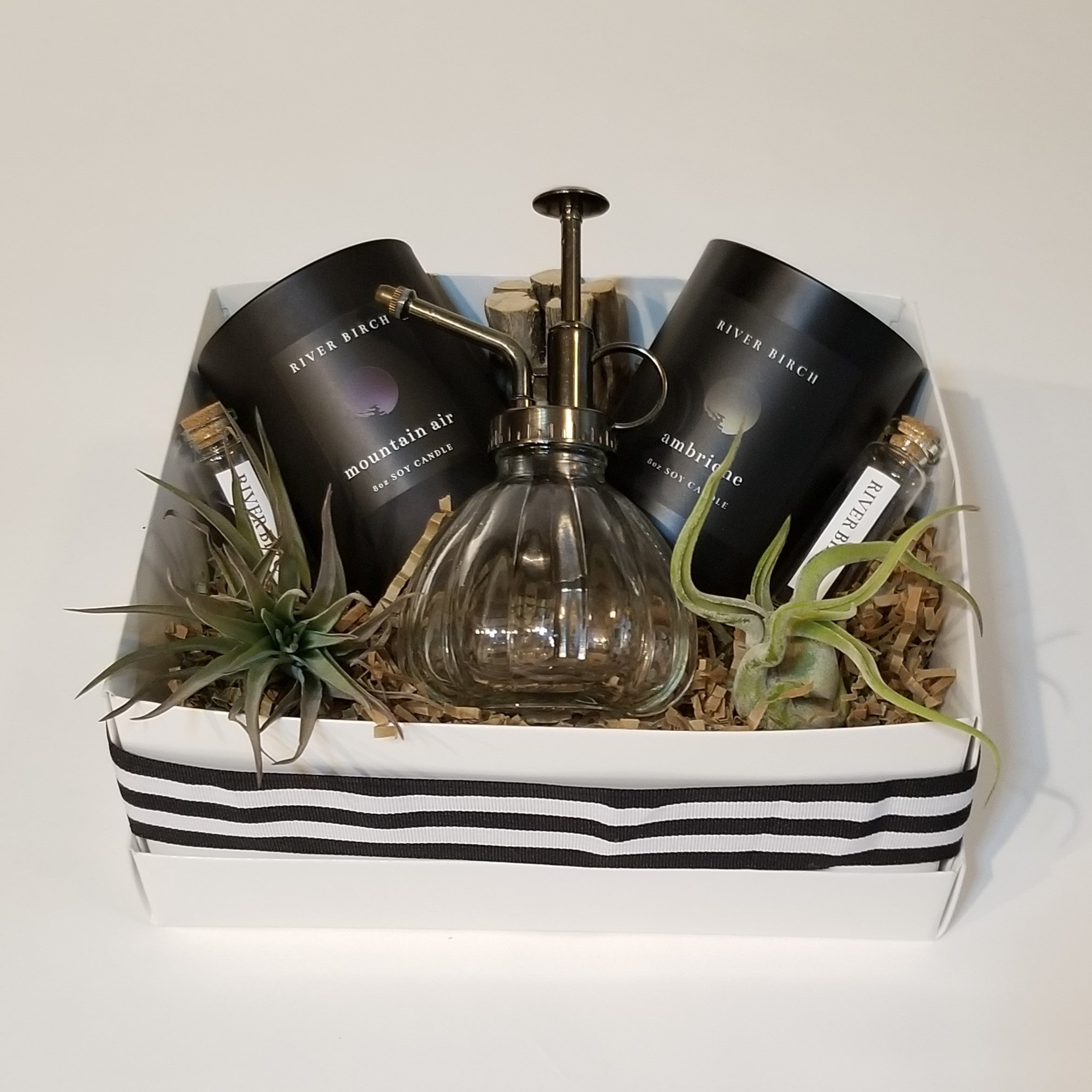 Thinking Of You - Candles & Air Plant Gift Box