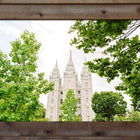Salt Lake Temple - Greenery