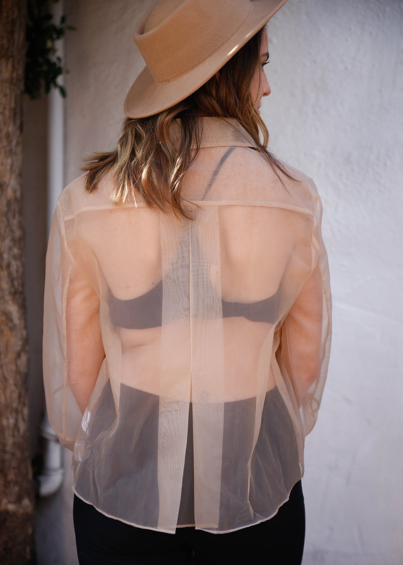 Transparent Button Down Blouse - AMĒNAH
