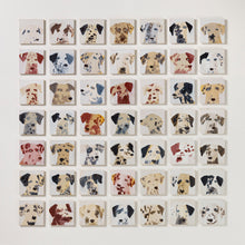 Load image into Gallery viewer, 49 Dalmatians