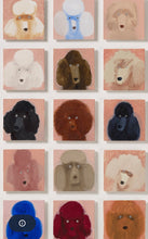 Load image into Gallery viewer, 49 Poodles