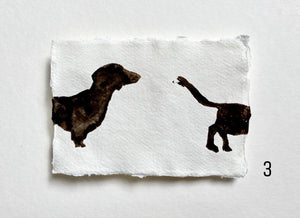 Dachshund (front/back)