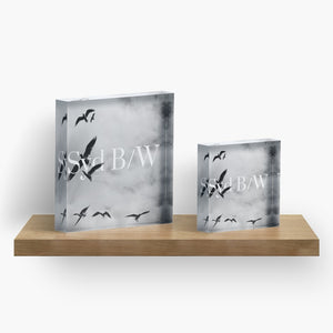 Signature Acrylic Block